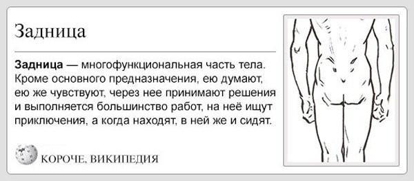 Главный орган у человека! (20 фото)