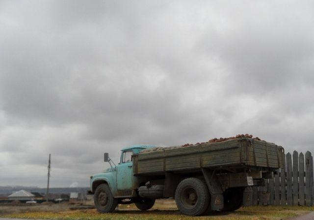 Зил 130 с картошкой (6 фото)