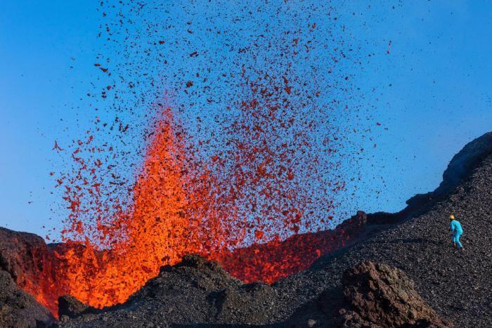 0863fd National Geographic: лучший фотограф природы года (23 фото)