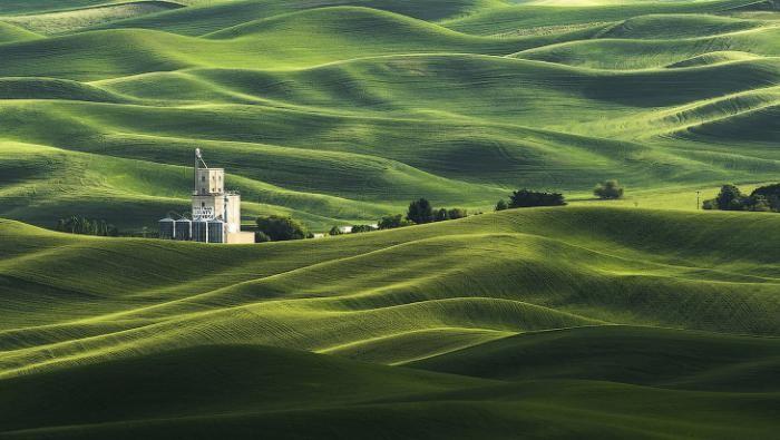 ac7c41 National Geographic: лучший фотограф природы года (23 фото)