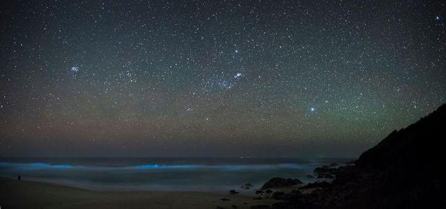 d8179e В Калифорнии океан стал светиться голубым цветом (8 фото)