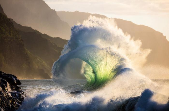 eb4c7c National Geographic: лучший фотограф природы года (23 фото)