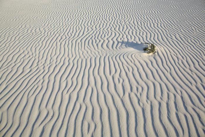 Прогулка по острову Сокотра (23 фото)