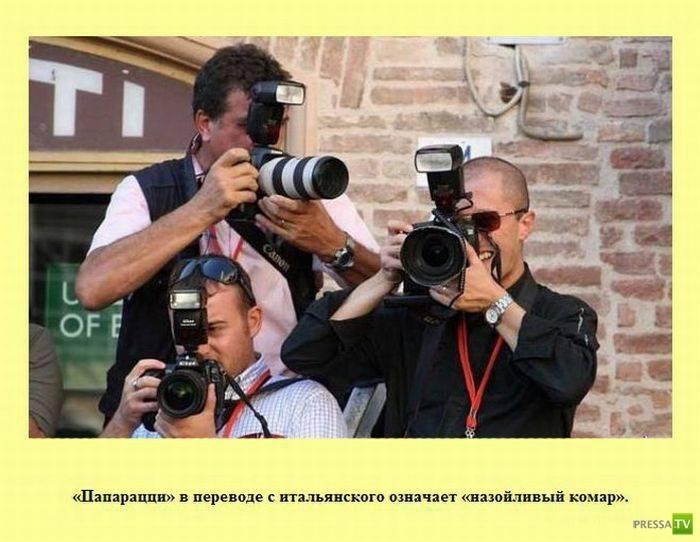 Интересные факты в картинках (44 фото)