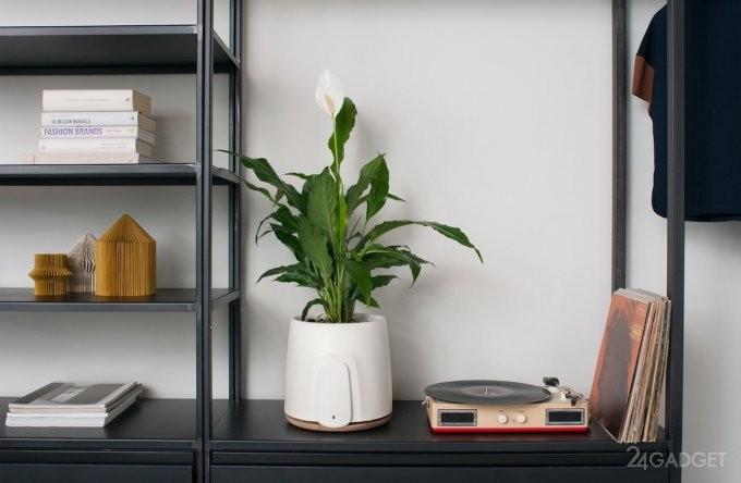 Смарт-очиститель воздуха в формате цветочного горшка (7 фото + видео)