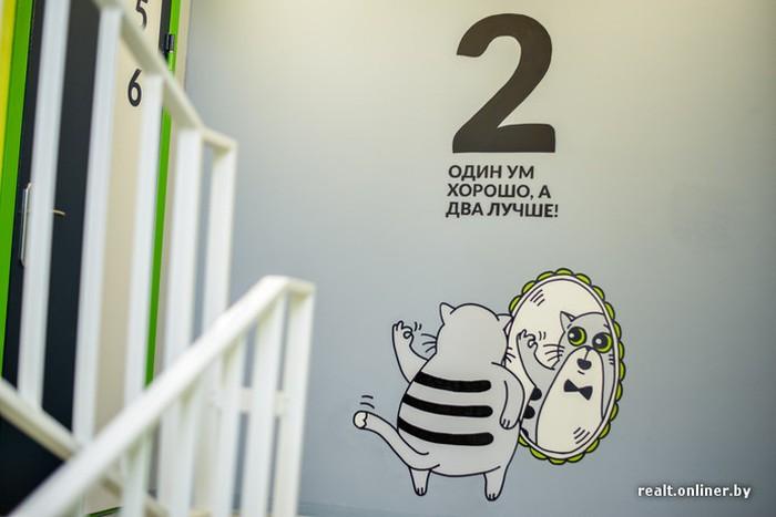 Кот Борис стал символом новостройки в Беларуси (21 фото)