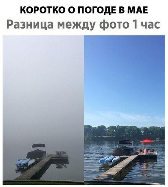 Подборка прикольных фотографий (48 фото)