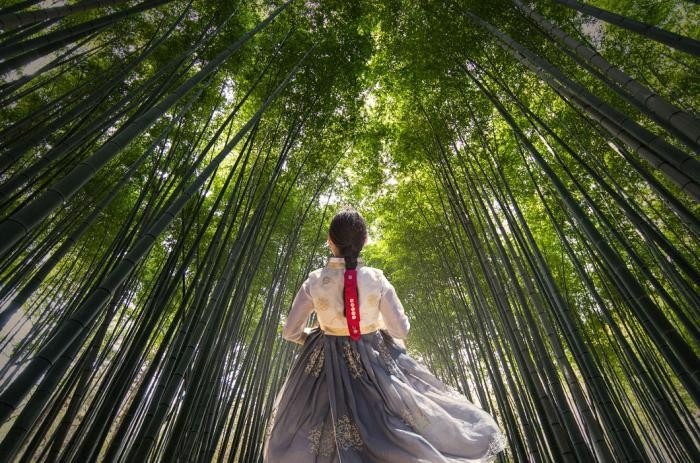 Южная Корея: фотопроект о стране утренней свежести (28 фото)