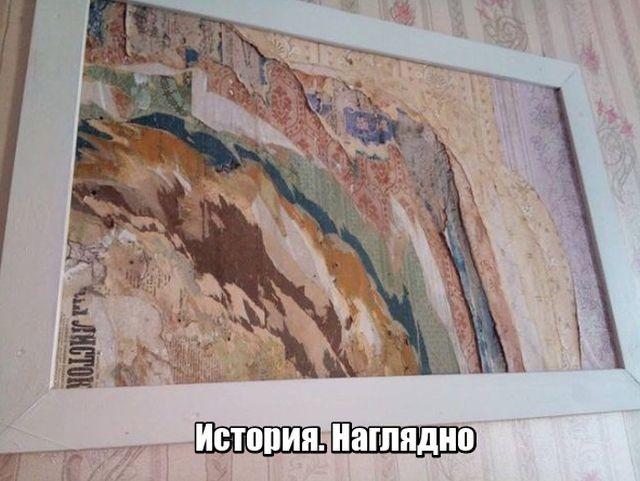 Подборка прикольных фотографий (52 фото)