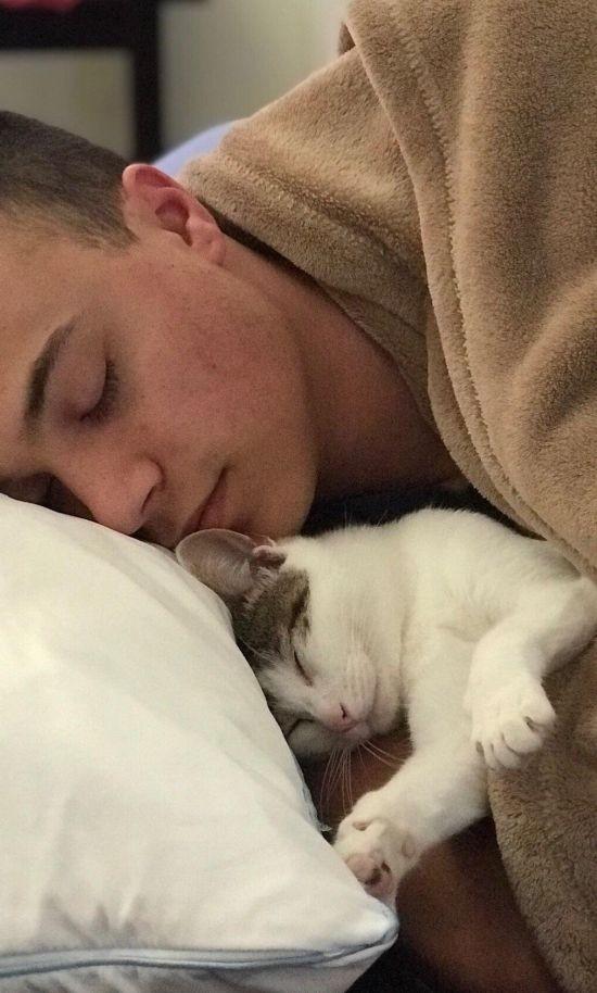 Чудесное преображение бездомного кота (3 фото)