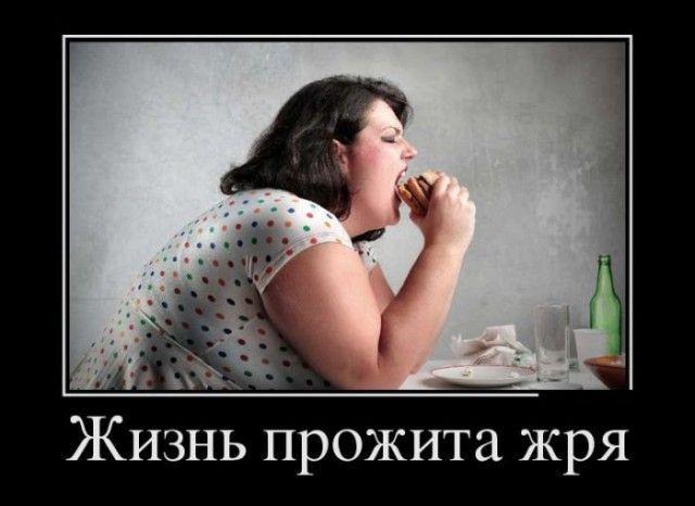 Шутки про лишний вес (26 фото)