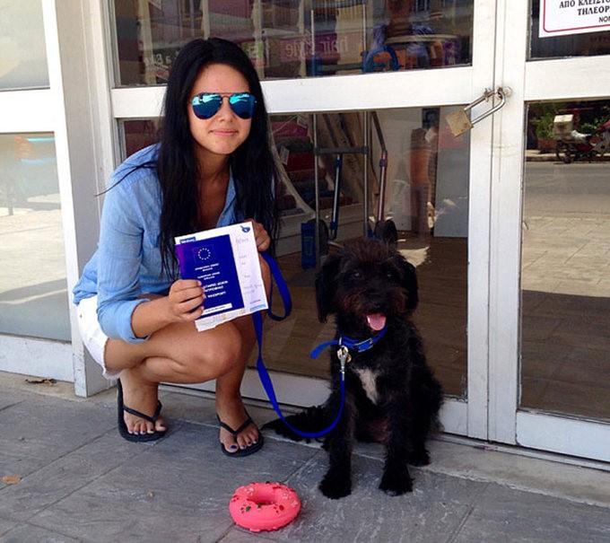 Студентка отблагодарила бездомную собаку за помощь (5 фото)