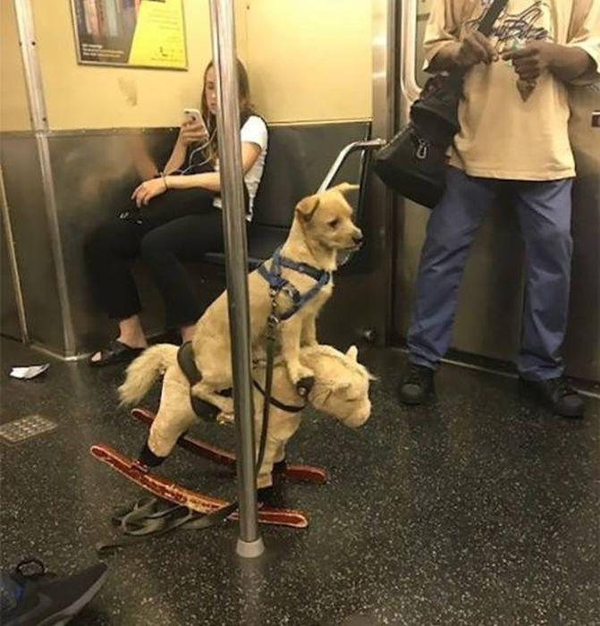 Странности в метро (43 фото)