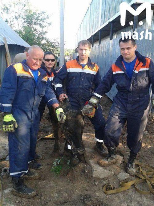 Сотрудники МЧС прибыли на вызов в поселок Бужаниново (5 фото)