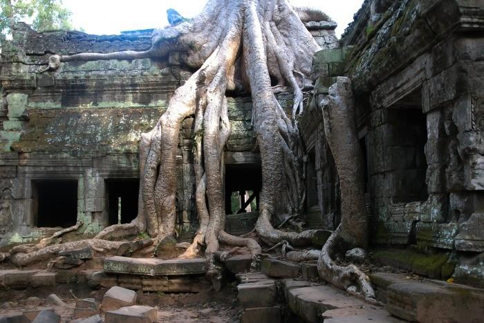 Ангкор – заброшенный древний мегаполис в джунглях (6 фото)