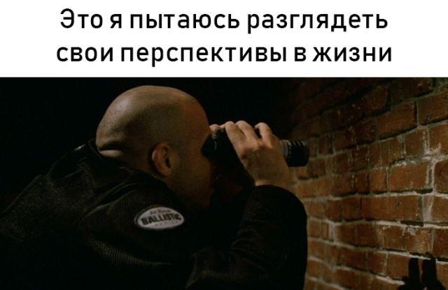 Подборка прикольных фотографий (49 фото)