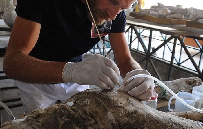 Что находится под вулканическим пеплом в городе Помпеи? (23 фото)