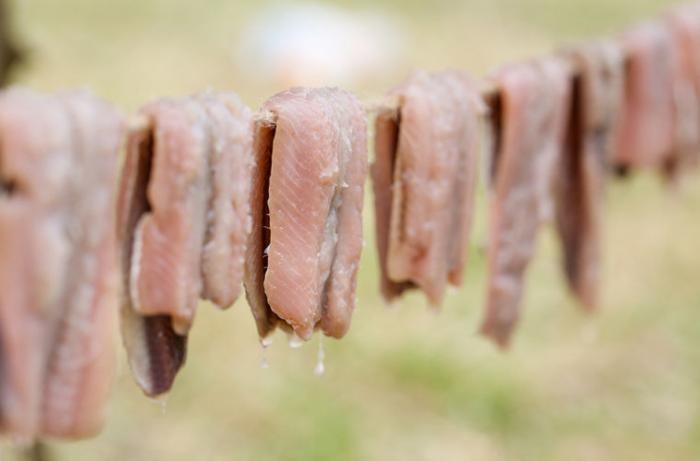 Сюрстрёмминг – экстремальный шведский деликатес (4 фото)