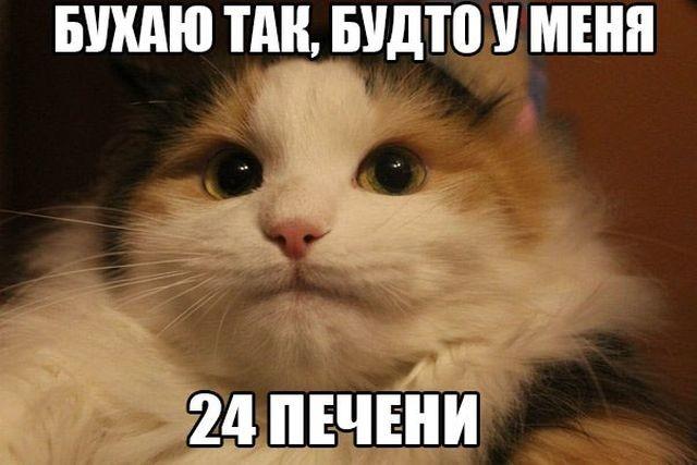 Алкогольный юмор (21 фото)
