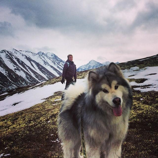 Завораживающие фото Аляски из Instagram (23 фото)