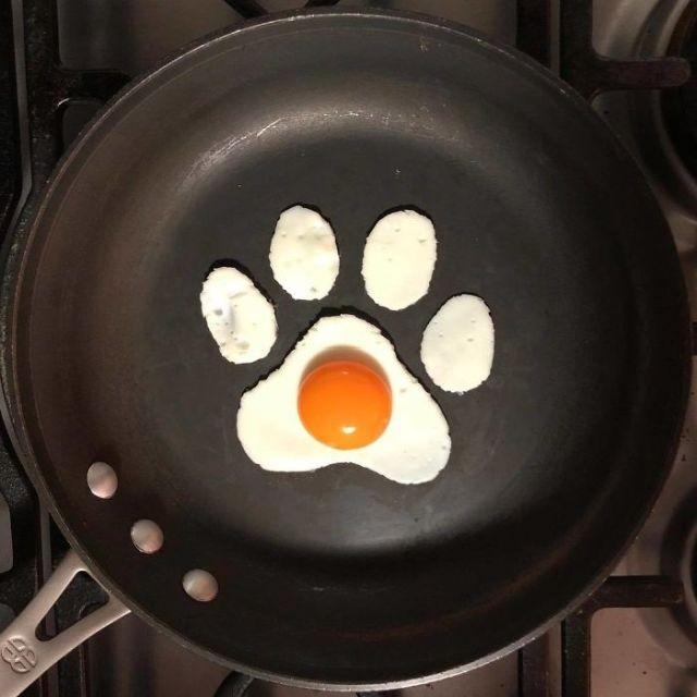 Креатив из яиц (25 фото)