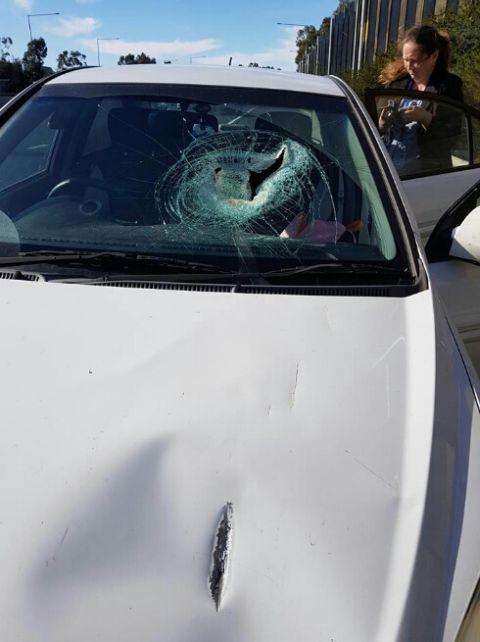 Запчасть от грузовика пробила лобовое стекло (3 фото)