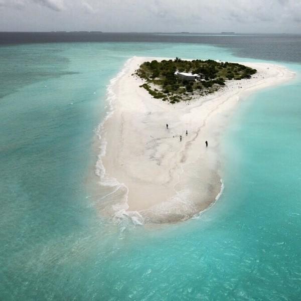"""Работа мечты: """"продавец книг"""" на Мальдивах (2 фото)"""
