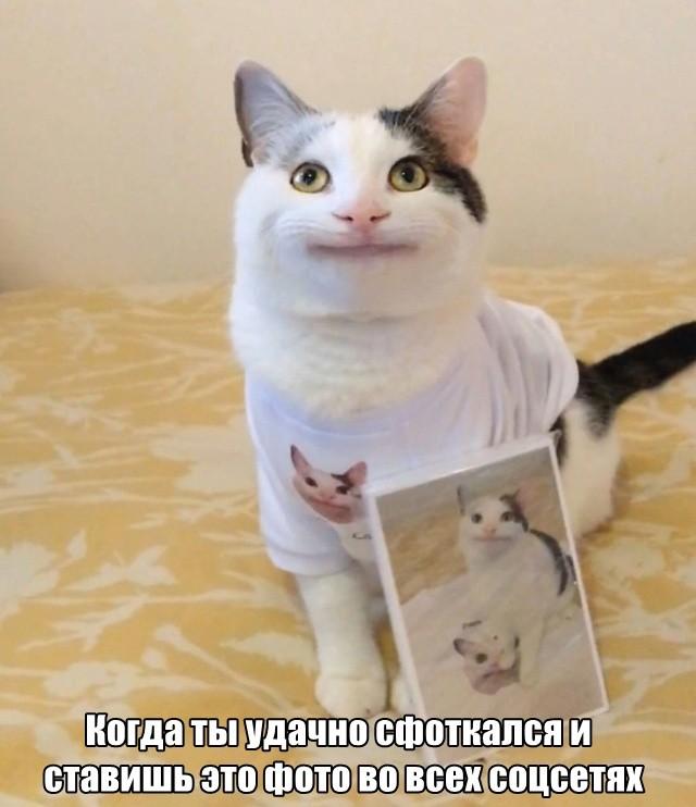Подборка смешных картинок (24 фото)