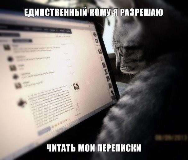 Как понять, что вашу переписку в соцсетях читают посторонние. Отследите шпиона и создайте ловушку