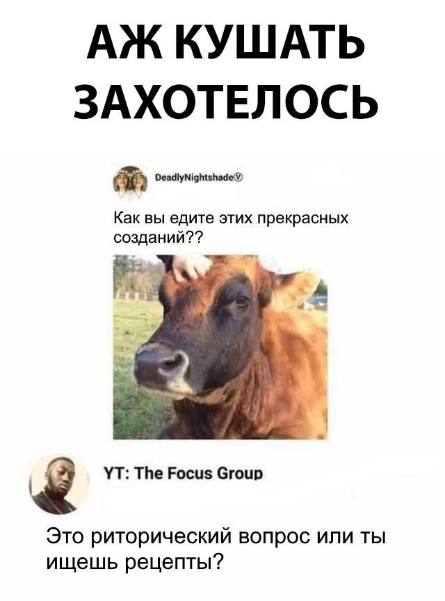 Коллекция смешных картинок