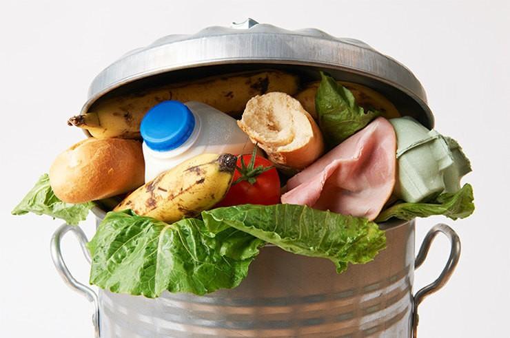 Как перестать кормить мусорку едой