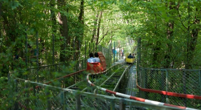 Самодельный парк аттракционов в лесу, построенный итальянцем