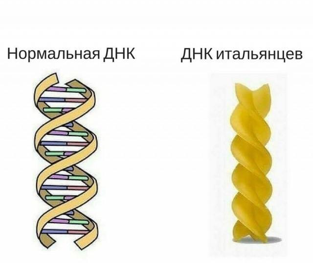 Юмор и шутки от химиков (19 картинок)