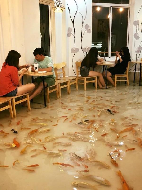 Необычное кафе во Вьетнаме (7 фото + видео)