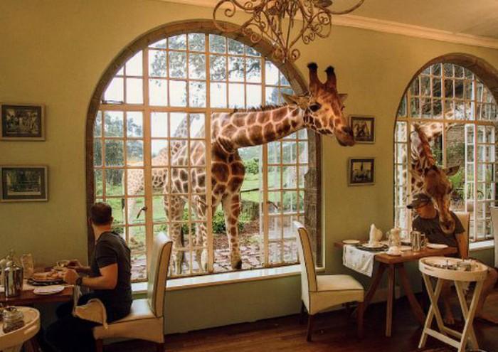 Самые чудные рестораны