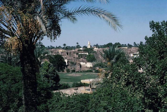 Зачем египтянам тысячи мумий крокодилов