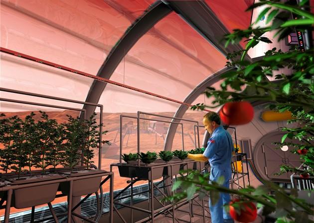 Космическая еда: прошлое, настоящее и будущее