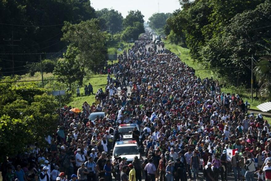 Миграционный караван, движущийся на север