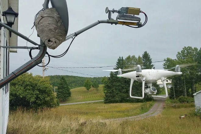Новые технологии против осиного гнезда
