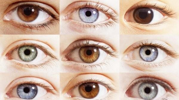 Как мы наследуем цвет глаз от наших родителей