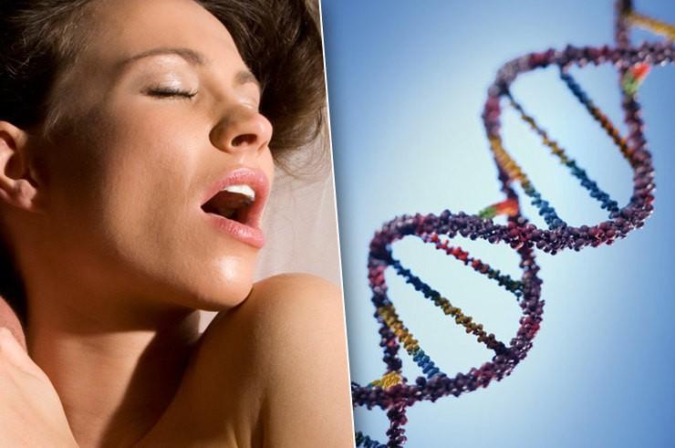 6 неожиданных фактов о генетике