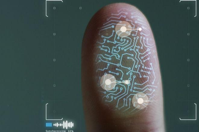 Что можно узнать по отпечатку пальца