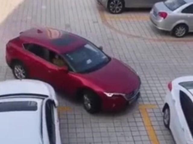 Навыки парковки 100 уровня
