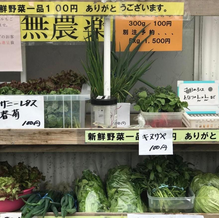 25 доказательств того, что японцы живут в будущем