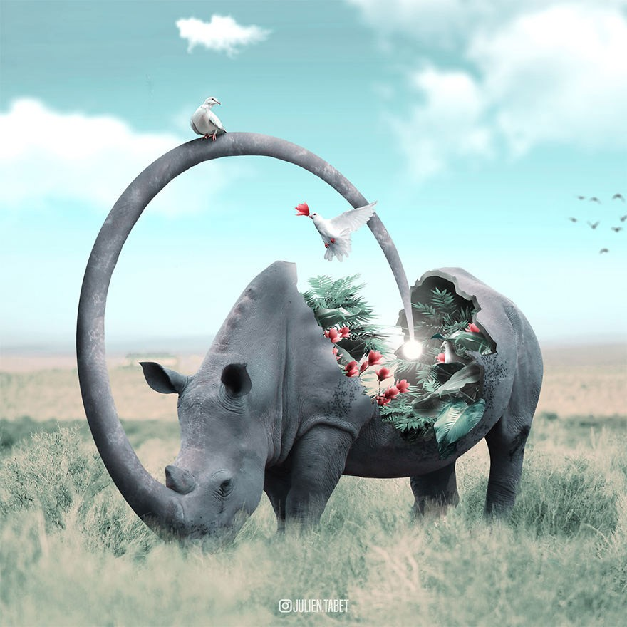 Животные и ассоциации
