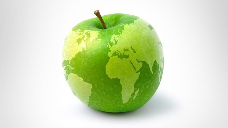 Диета, которая сохранит здоровье и наше и планеты