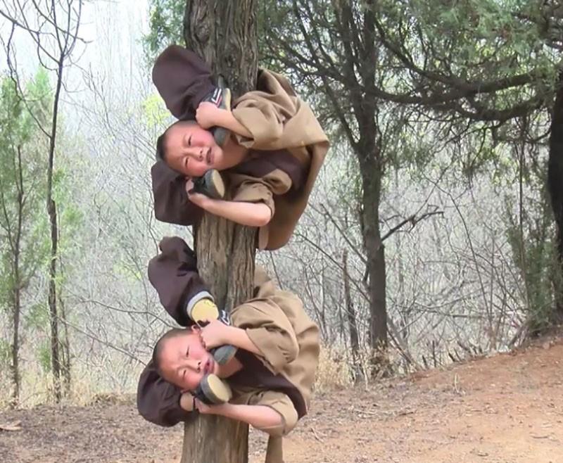 Суровые тренировки подрастающего поколения монахов Шаолиня