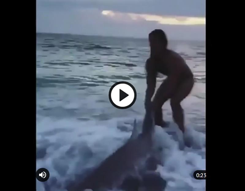 Девушка голыми руками спасла акулу