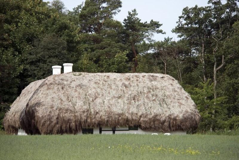 Необычные дома с крышами из морских водорослей